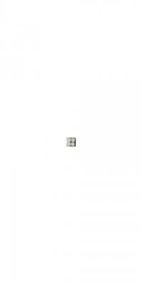 Blütenlichter weiss-02
